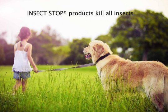 INSECT STOP® products kill all insects